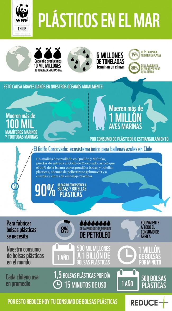 03259f7cb Basta de plástico! 8 iniciativas chilenas que pretenden reducir el ...