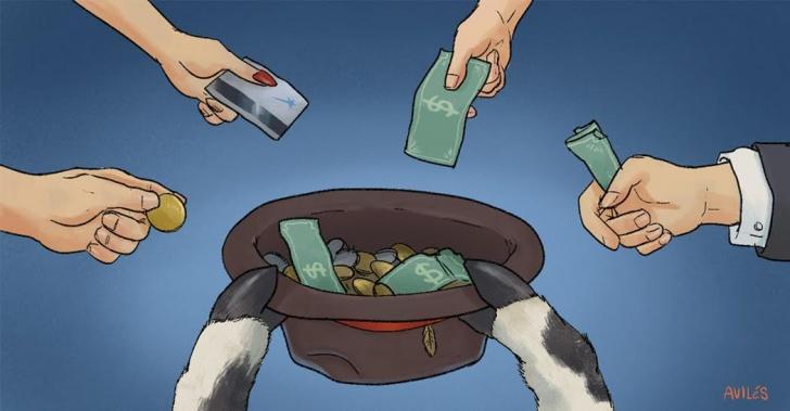 Vacas, ahorro, juntar plata, crowdfunding