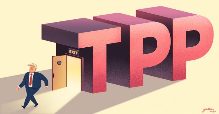 Resultado de imagen para TPP