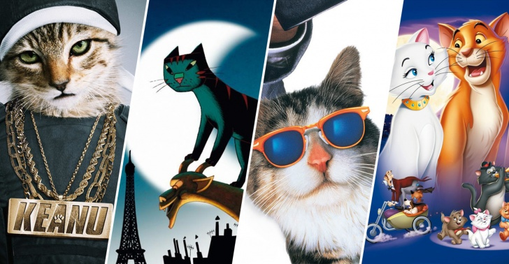 cine, películas, gatos, felinos, agosto, mes de los gatos