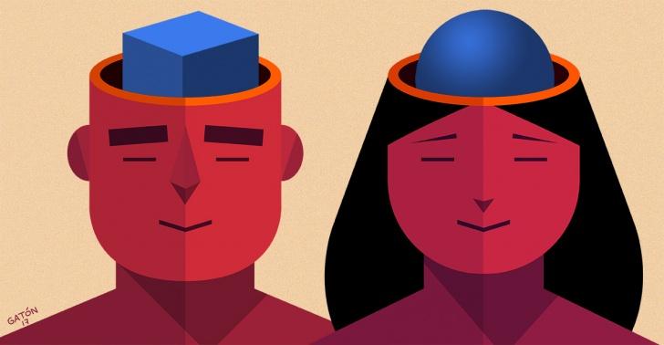cerebro, hombre, mujer, neurociencia, ciencia, biología