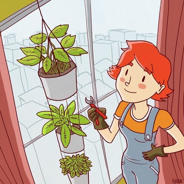 Huerto urbano, huerto vertical, instrucciones, autocultivo, manuales, ecología