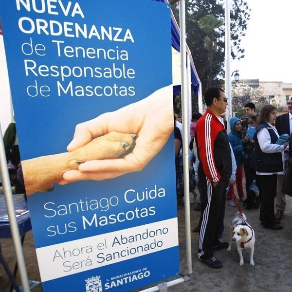 tenencia, mascotas, animales, perros, vagos, municipalidades, municipios,