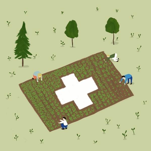 suiza, Environmental Performance Index, epi, ecología, medioambiente, país verde