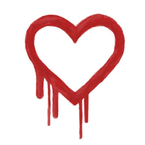 heartbleed, bug, contraseñas, internet, hacker, seguridad, OpenSSL