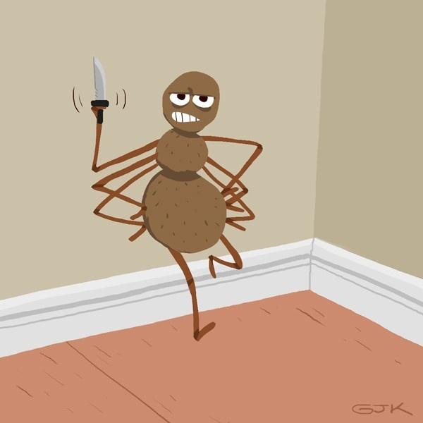 arañas, picaduras, araña de rincón, insectos, veneno