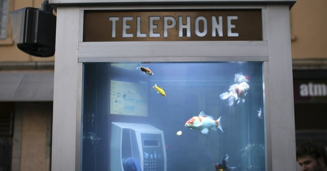 telefonos, públicos, telefonía, nueva york, osaka, cabinas, wifi, sandy, smartphones