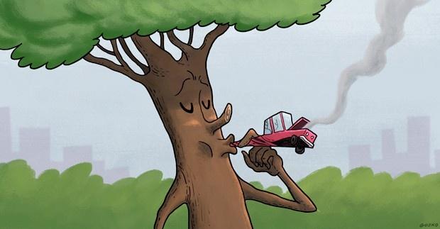 Áreas verdes, árboles, Fundación Mi Parque, campaña, cambiemos el gris por verde, contaminación, donación