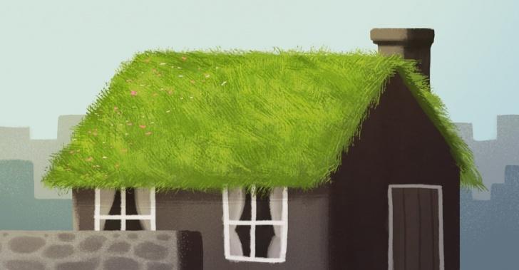 medio ambiente, copenhague, techos verdes, cubiertas verdes, ecología, sustentable, biodiversidad