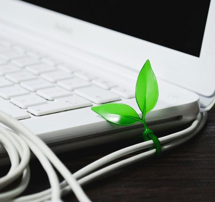 diseño, medio ambiente, naturaleza, verde, árboles, hojas, pasto, ecología