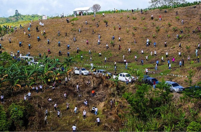 Reforestación, Filipinas, record, árboles, millones
