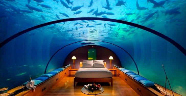 Hoteles, flotantes, agua, mar, mundo, lujo, bungalows