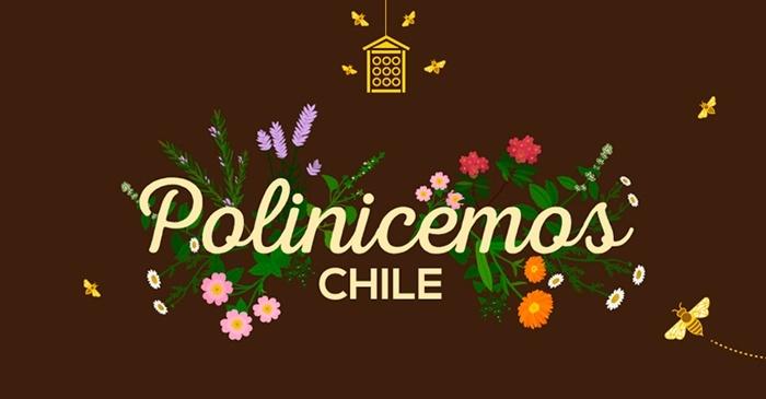 Abejas, Polinización, Plan Bee, biodiversidad, ecosistema