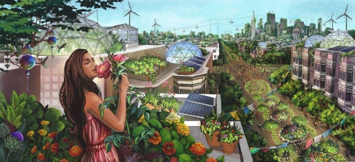 agricultura, sustentabilidad, alimentos, alimentación, contaminación, deforestación, ecología, medio ambiente