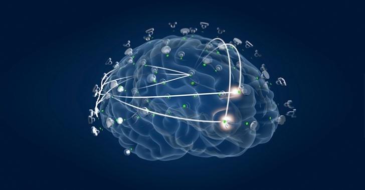 ciencia, tecnología, innovación, neurología, cerebro