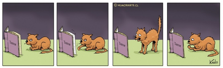 Terror, Libro, Gato