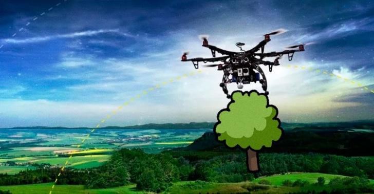 drones, árboles, plantar, tecnología, startup