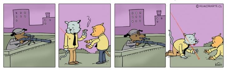 Francotirador, Gatos, Perros, Juegos