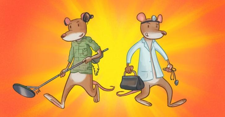 HeroRats, ratas gigantes, tuberculosis, minas antipersonales, olfato, detectan, África, ayuda, solución