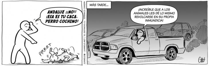 animales, caca, inmundicia, contaminación, autos, Santiago, polución, smog, suciedad