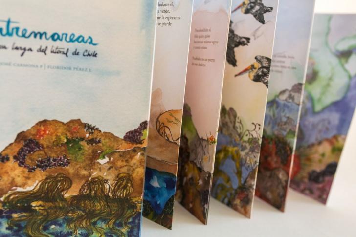 litoral, playas, Chile, Ciencia & Vida, libro, ciencia