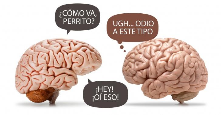 tecnología, innovación, ciencia, telepatía, cerebro, mente, pensamientos, comunicación