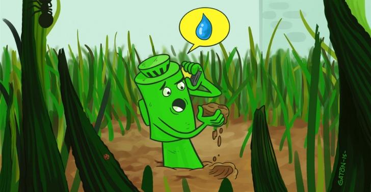 Riego, agua, consumo, app