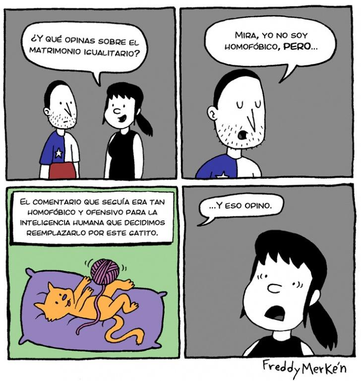 Homofobía, Matrimonio, Igualitario, Opinión, Gatito