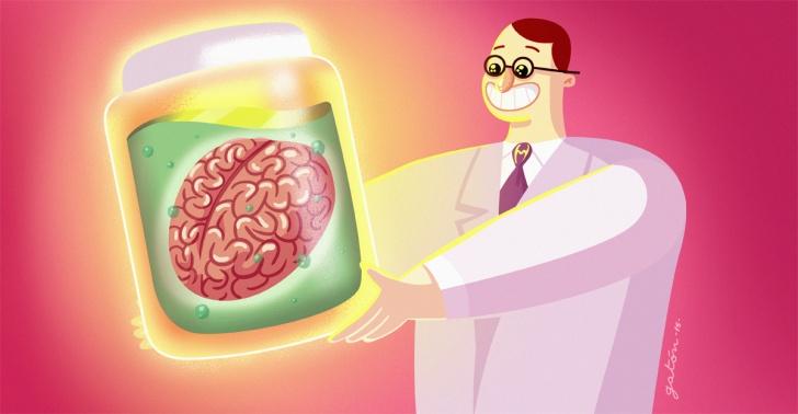 cerebros, ciencia, biología, mente, Einstein, Albert, curiosidades, freak