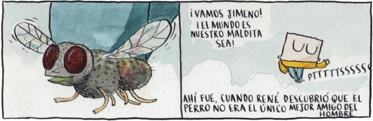 Insectos, Amistad, Perros, Amor