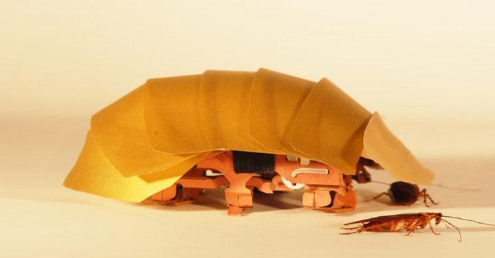 robots, tecnología, innovación, cucarachas, naturaleza, insectos, terremotos, desastres, rescate, catástrofes, terremotos