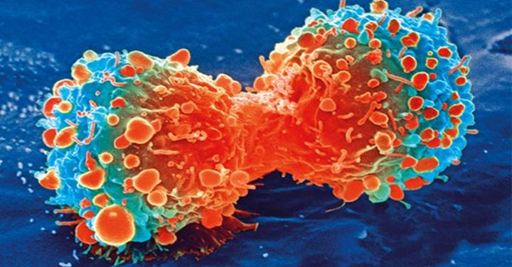 cáncer, quimioterapia, tratamiento, salud, medicina, ciencias