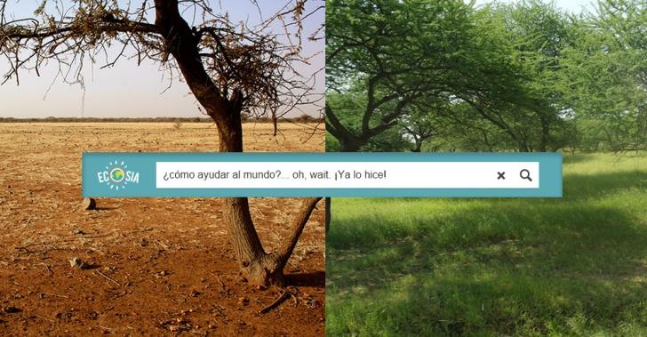 Ecosia, árbol, medioambiente, plantar, búsqueda, internet, gran, muralla, verde