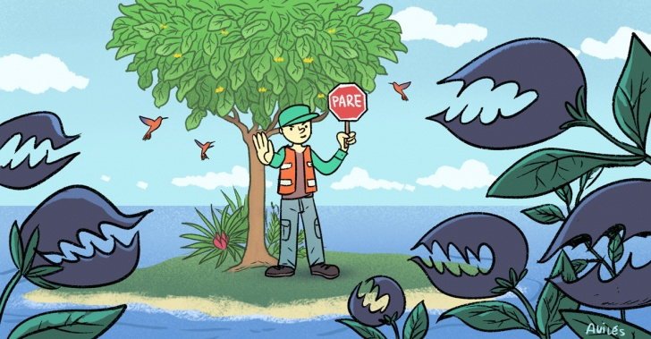 archipiélago de juan fernández, islas, especies endémicas, especies exóticas invasoras, conaf