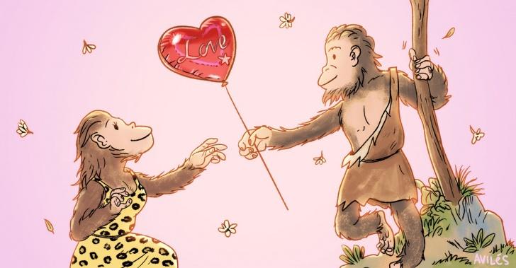 amor, neurociencia, antropología, primates, hono erectus, sexo