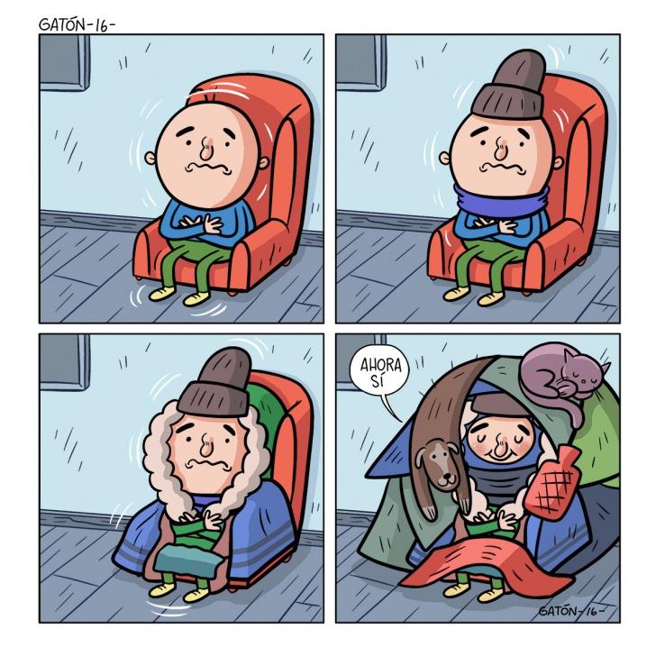 frío, invierno, ropa, sillón, sentado, lluvia, calefacción, solo, perro, gato