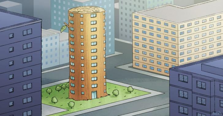 edificios, construccion, madera, rascacielos, arquitectura, ambiente, verde, arbol
