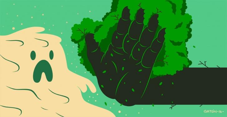 desertificación, africa, sahel, gran muralla verde, chile, sequía