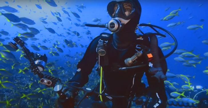 parque marino, islas desventuradas, san félix, san ambrosio, ciencia, biología marina, diversidad, océano, chile