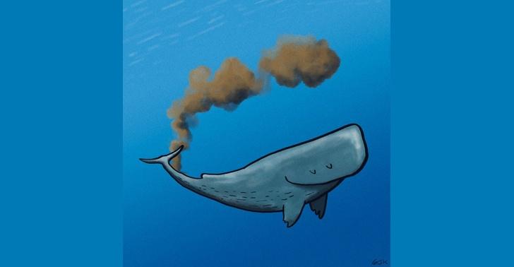 ballenas, océanos, mar, contaminación, plástico, dióxido de carbono, calentamiento global