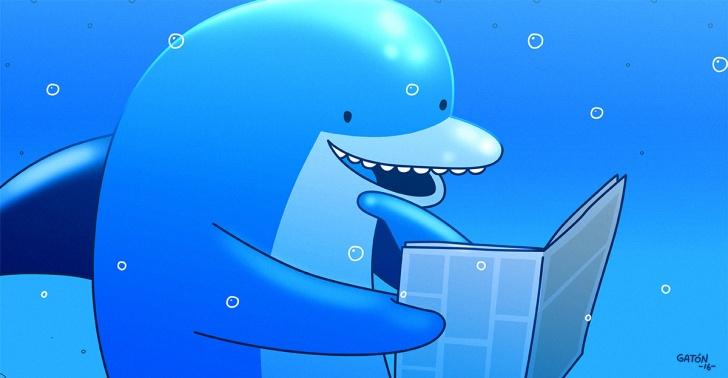 delfines, animales, inteligencia, lenguaje, ciencia, mar, océano