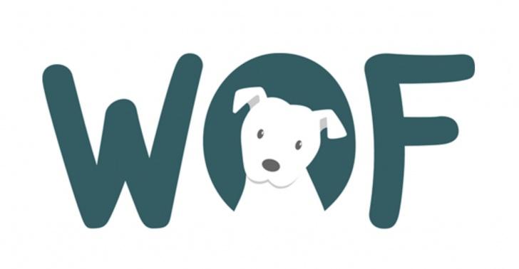 Perros, mascotas, adopción, cuidado animal, doglovers, animales
