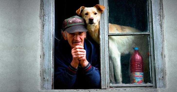 tercera edad, envejecimiento, Alzheimer, demencia, prevenir, Minsal, Caja Los Andes