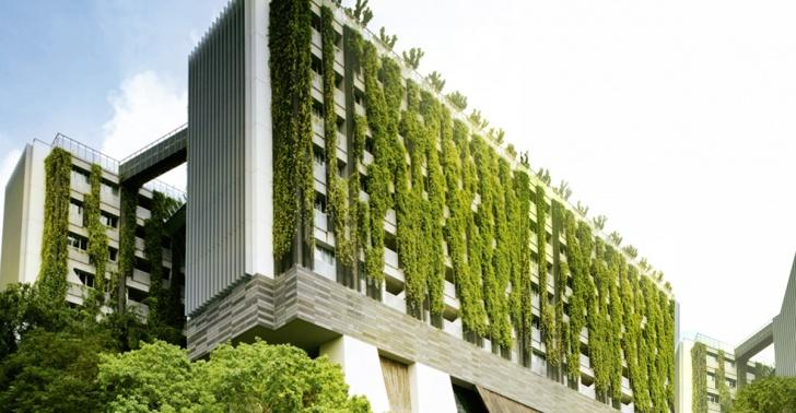 ciudad verde, jardín vertical, sostenibilidad, vida sana, huerto urbano