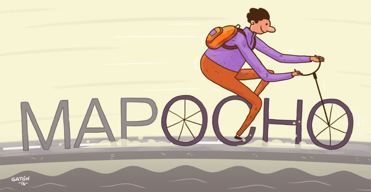 mapocho, rio, ciclovia, pedales, bicicleta, doglover, ONG, proyecto, mapocho pedaleable, rio mapocho, seguridad