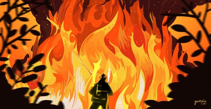 incendios, incendios forestales, Conaf, bomberos, fuego, llamas, brigadistas, prevención, combate