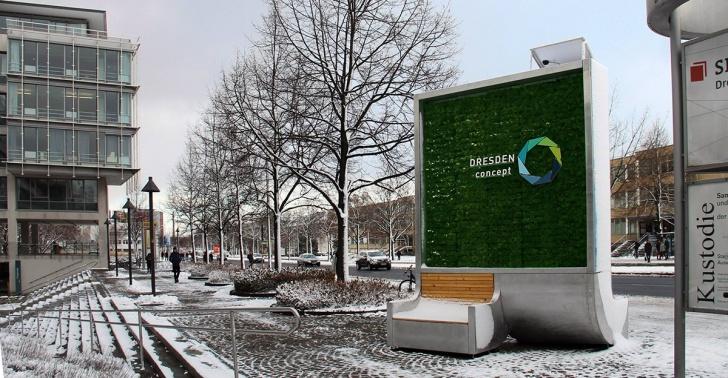 esmog, contaminación ambiental, contaminación, ciudades, árboles
