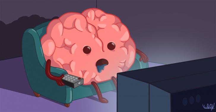 neurona, mito, cerebro, ciencia, cuerpo, humano