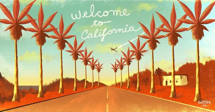 marihuana, california, despenalizacion, cannabis, ley, penalizacion