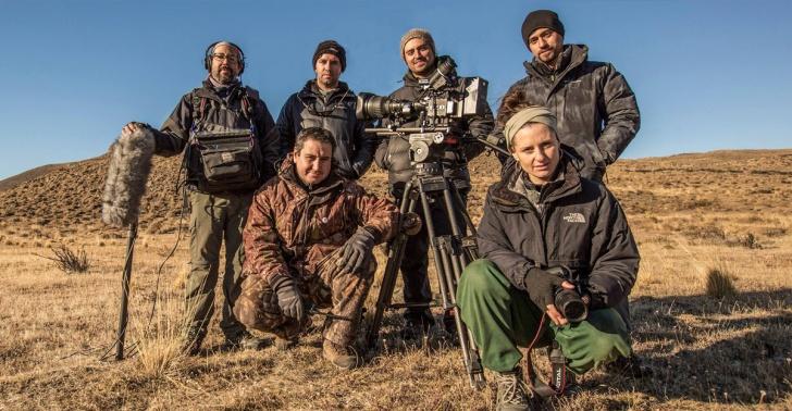 WILD CHILE, documental, naturaleza, historia natural, fauna chilena